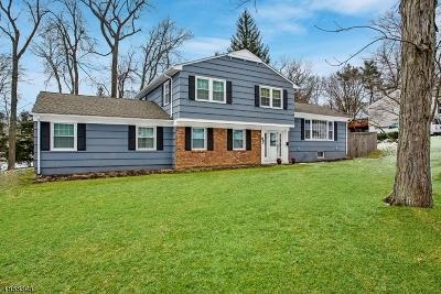 New Providence Boro Single Family Home For Sale: 93 Walnut St