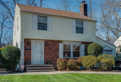 Springfield Twp. Single Family Home For Sale: 61 Denham Rd
