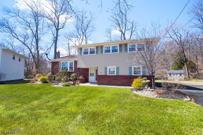 Scotch Plains Twp. Single Family Home For Sale: 9 Copperfield Rd