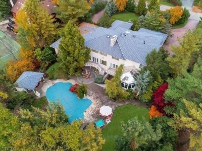 Livingston Twp. Single Family Home For Sale: 30 Vanderbilt Dr