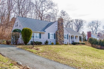 Boonton Town Single Family Home For Sale: 524 Essex Ave