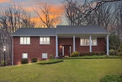 MOUNTAINSIDE Single Family Home For Sale: 1177 Ridge Dr