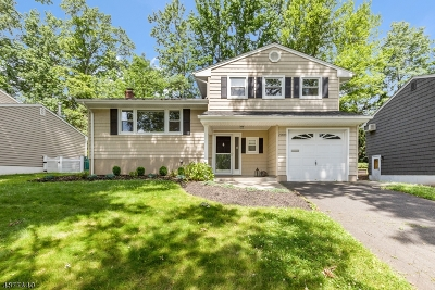 Scotch Plains Twp. Single Family Home For Sale: 2093 Mapleview Ct