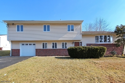 Springfield Twp. Single Family Home For Sale: 10 Hilltop Ct