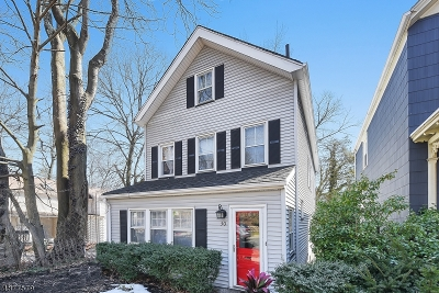 South Orange Village Twp. Single Family Home For Sale: 30 S Ridgewood Rd