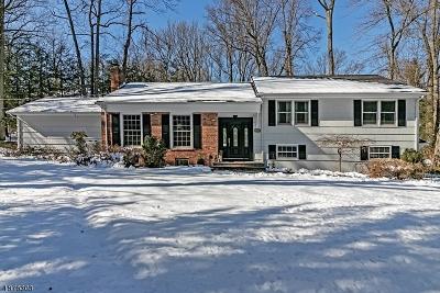 Scotch Plains Twp. Single Family Home For Sale: 1249 Sleepy Hollow Ln