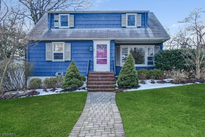 Millburn Twp. Single Family Home For Sale: 80 Cypress St