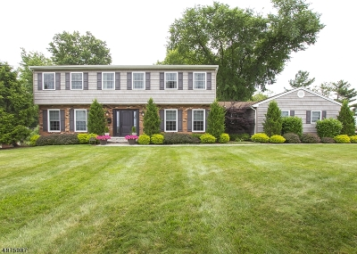 Livingston Twp. Single Family Home For Sale: 8 Dellmead Dr