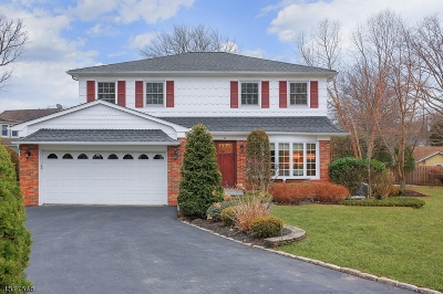WESTFIELD Single Family Home For Sale: 8 Burgess Ct