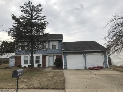 Edison Twp. Single Family Home For Sale: 33 E Wintergreen Ave