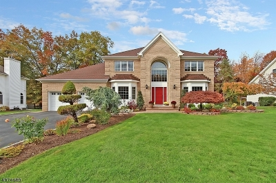 Hanover Twp. Single Family Home For Sale: 12 Behrens Dr