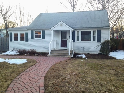 Parsippany-Troy Hills Twp. Single Family Home For Sale: 129 River Dr