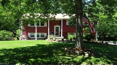 Mountainside Boro Single Family Home For Sale: 1092 Saddle Brook Rd