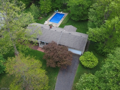 Randolph Twp. Single Family Home For Sale: 10 Holly Dr