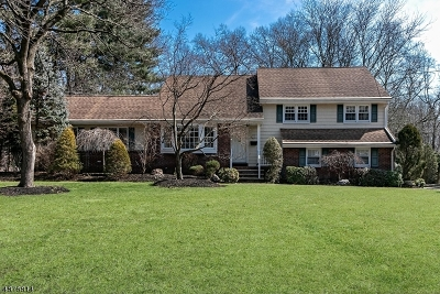 Scotch Plains Twp. Single Family Home For Sale: 1952 Inverness Drive