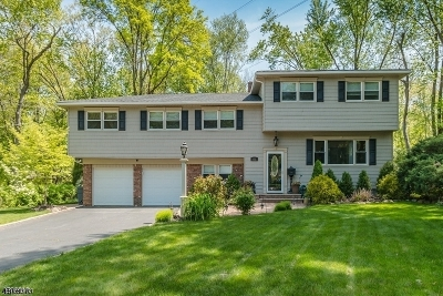 Berkeley Heights Twp. Single Family Home For Sale: 132 Robbins Ave