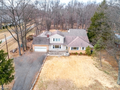 WATCHUNG Single Family Home For Sale: 1121 Johnston Dr