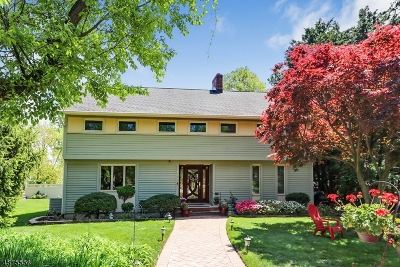Cranford Twp. Single Family Home For Sale: 408 Casino Ave