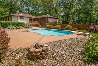 Randolph Twp. Single Family Home For Sale: 18 Tammy Hill Trl