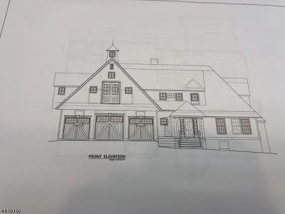 Morris Twp. Single Family Home For Sale: 188 James St