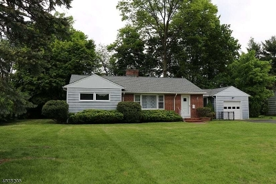 Parsippany-Troy Hills Twp. Single Family Home For Sale: 51 Wingate Rd