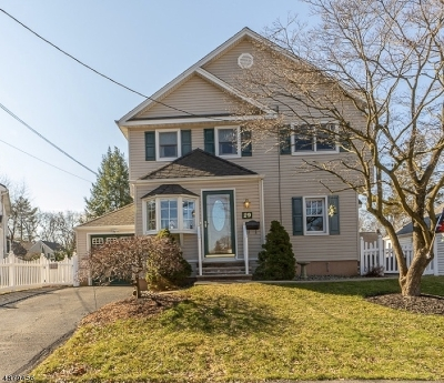 Cranford Twp. Single Family Home For Sale: 29 Ramapo Rd