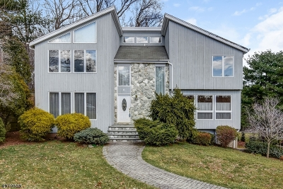 WESTFIELD Single Family Home For Sale: 6 Hampton Ct