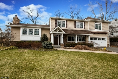 Livingston Twp. Single Family Home For Sale: 76 Ridge Dr