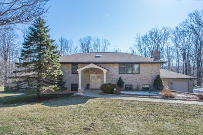Randolph Twp. Single Family Home For Sale: 21 Old Brookside Rd