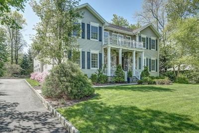 Millburn Twp. Single Family Home For Sale: 60 Harvey Dr