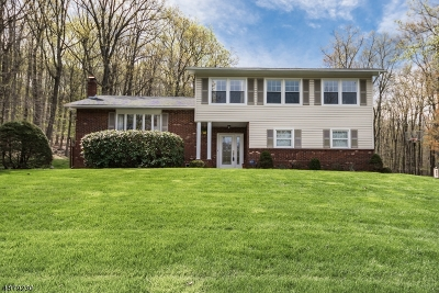 Roxbury Twp. Single Family Home For Sale: 75 Parkview Dr