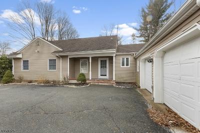 Roxbury Twp. Single Family Home For Sale: 174 Eyland Ave