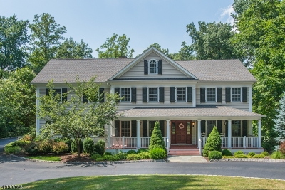 Millburn Twp. Single Family Home For Sale: 256 Hartshorn Dr