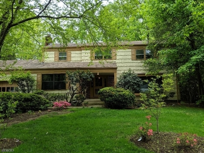 Parsippany-Troy Hills Twp. Single Family Home For Sale: 21 Wood Glen Way
