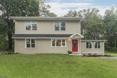 Springfield Twp. Single Family Home For Sale: 305 Arneys Mt Rd