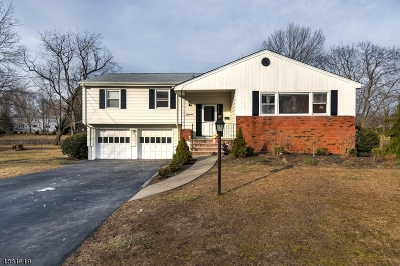 Parsippany-Troy Hills Twp. Single Family Home For Sale: 15 Ulysses St