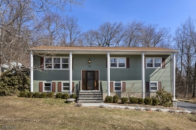 Denville Twp. Single Family Home For Sale: 16 Holly Dr