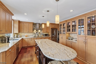 Morris Twp. Single Family Home For Sale: 22 Spring Brook Rd