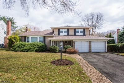 Springfield Twp. Single Family Home For Sale: 26 Mohawk Dr