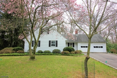 East Brunswick Twp. Single Family Home For Sale: 21 Patton Dr