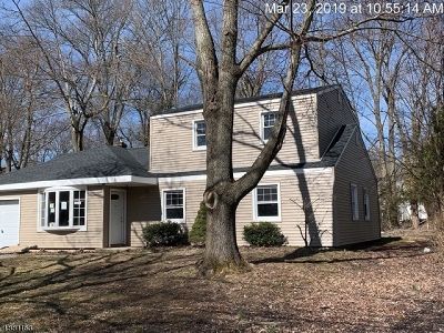 Livingston Twp. Single Family Home For Sale: 19 Carlisle Dr