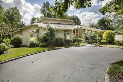 Livingston Twp. Single Family Home For Sale: 14 Driftwood Dr
