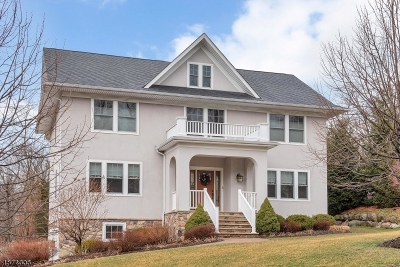 Boonton Town Single Family Home For Sale: 5 Hapgood Ct