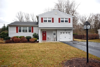 Parsippany-Troy Hills Twp. Single Family Home For Sale: 70 Westminster Dr