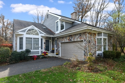 South Brunswick Twp. Single Family Home For Sale: 6 Orchid Ct