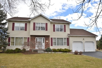 East Hanover Twp. Single Family Home For Sale: 4 Heritage Dr