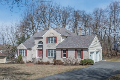 Randolph Twp. Single Family Home For Sale: 9 Farragut Rd