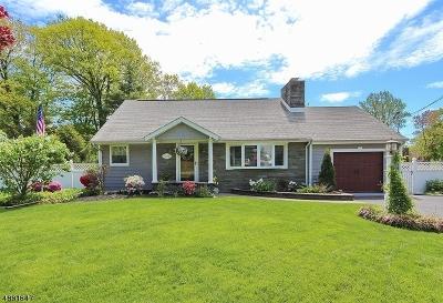 Mountainside Boro Single Family Home For Sale: 1329 Hidden Cir