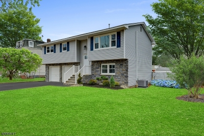 Scotch Plains Twp. Single Family Home For Sale: 1628 Front St