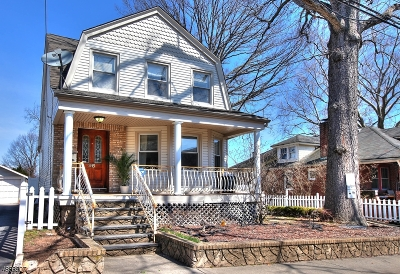 Belleville Twp. Single Family Home For Sale: 96 Overlook Ave